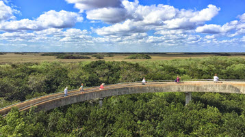 一起旅行 - 佛罗里达大沼泽公园 - abcxyz123.com